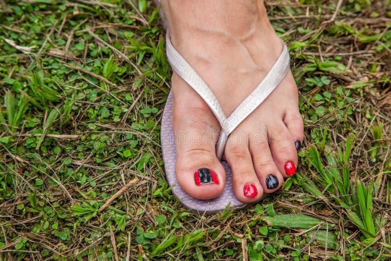 Les pieds de la femme avec la pantoufle, clous ont peint noir et rouge image stock