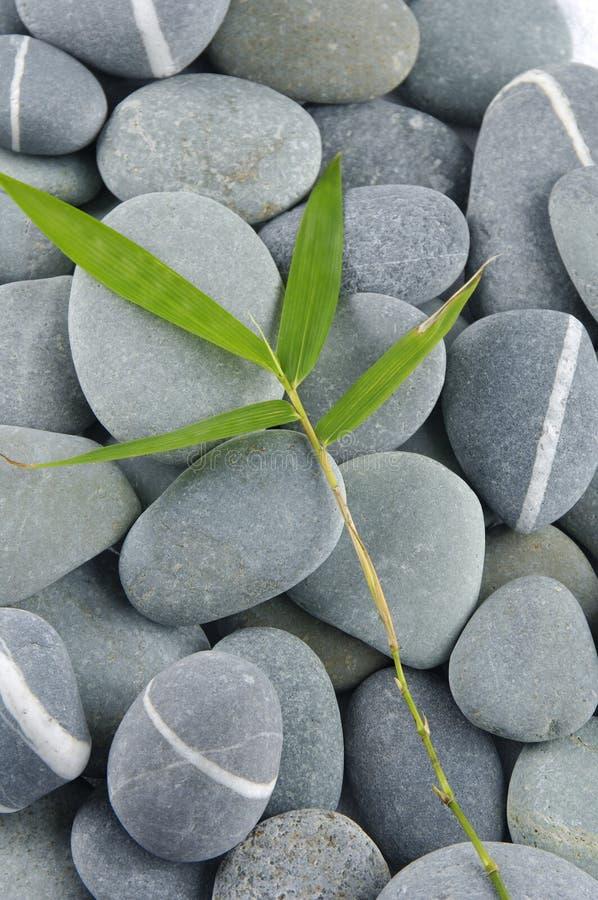 Les pierres et bambou-laissent photos libres de droits