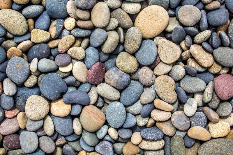 Les pierres multicolores ont arrondi par l'eau sur la plage d'océan image stock