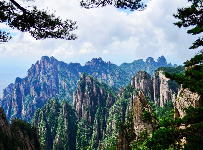 Les pins et les crêtes de Huangshan jaunissent la montagne à la province d'Anhui Chine image stock