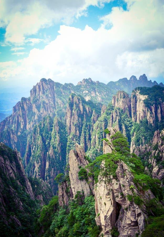 Les pins et les falaises à Huangshan jaunissent la montagne dans la province d'Anhui Chine images stock