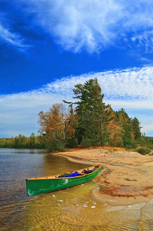 Les pins, lac Pickerel, Quetico, Ontario image stock