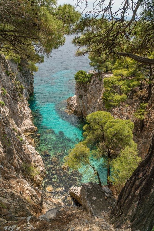 Les pins sur une roche au-dessus de turquoise clair comme de l'eau de roche arrosent pr?s du cap Amarandos ? l'?le de Skopelos image stock