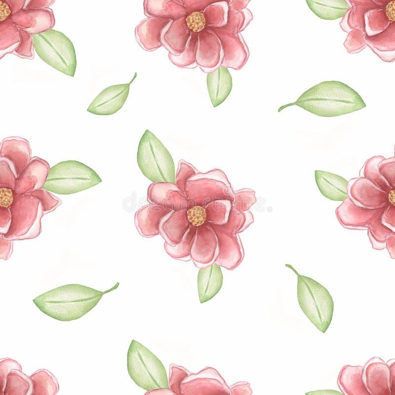 Les pivoines de rose d'aquarelle avec geen des feuilles sur le fond blanc Configuration sans joint tir?e par la main Fleurs roman illustration libre de droits