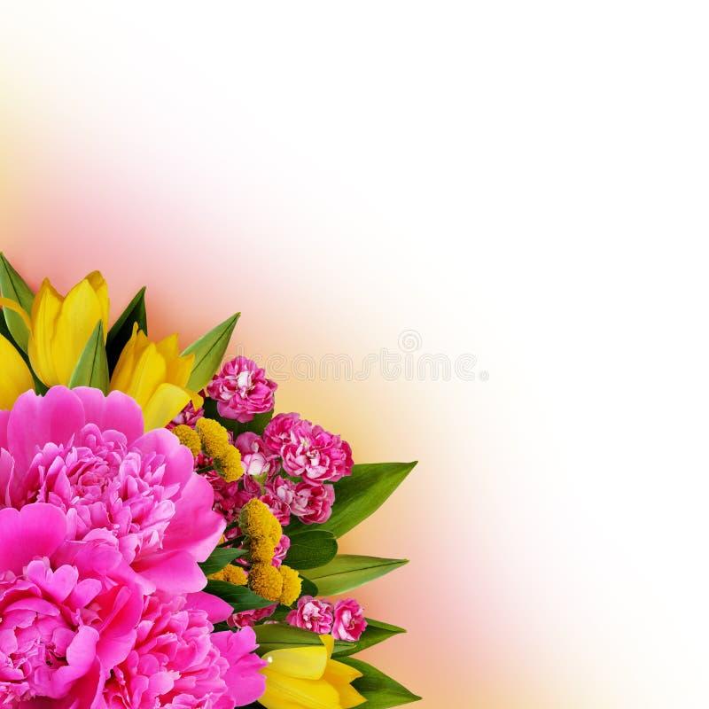 Les pivoines, les tulipes et les fleurs de hawtorn acculent la disposition photographie stock libre de droits