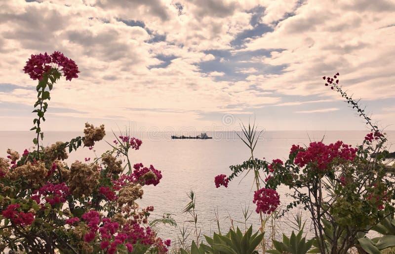 Les plages les plus belles en la Madère image libre de droits