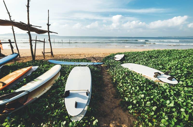 Les planches de surf sont sur la plage erly au temps de matin sur le ressac POI image stock