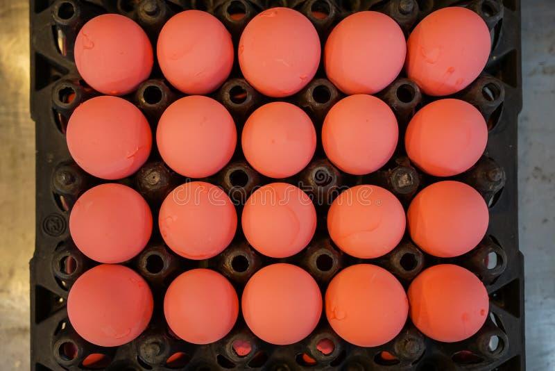 Les plateaux noirs complètement de couleur rose douce ont préservé le modèle de rangées d'oeufs de poulet se vendant sur le march photographie stock libre de droits