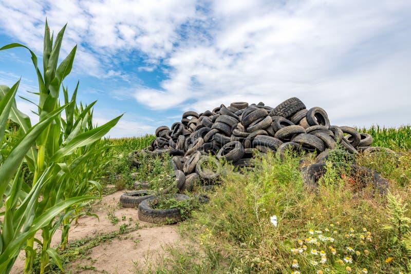 Les pneus de voiture cassés ont empilé jusqu'à une montagne dans un domaine de maïs photos libres de droits