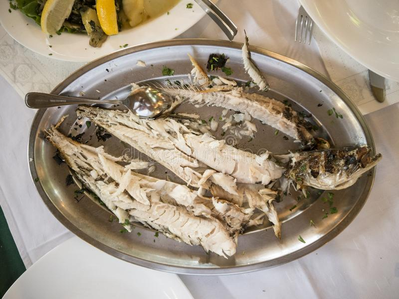 Les poissons envoyés à la boucherie se réunissent sur la vue supérieure de plat images libres de droits