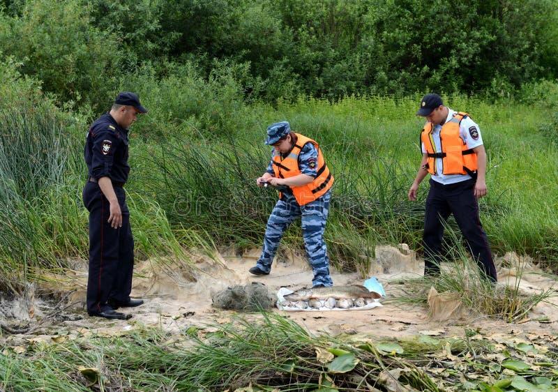 Les policiers sortent des poissons d'un pêcheur pour pocher sur la rivière d'Oka photographie stock libre de droits