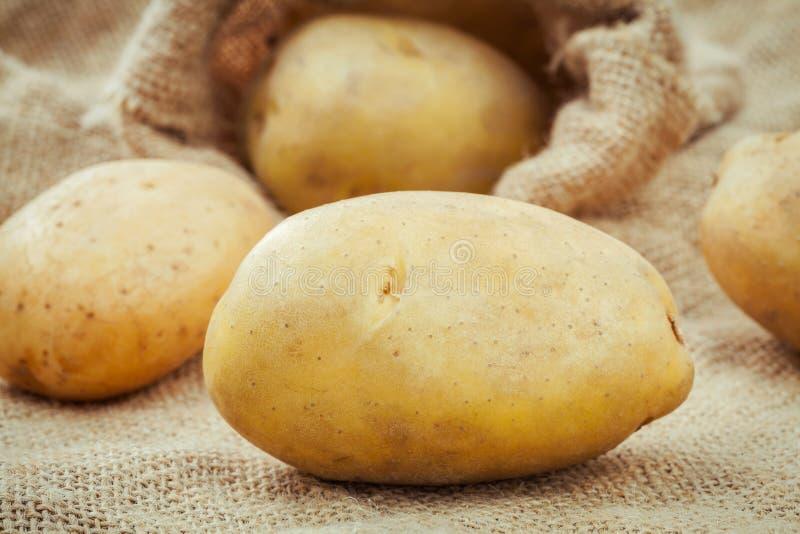 Les pommes de terre organiques fraîches de plan rapproché sur le chanvre renvoient le fond Ha frais photo stock