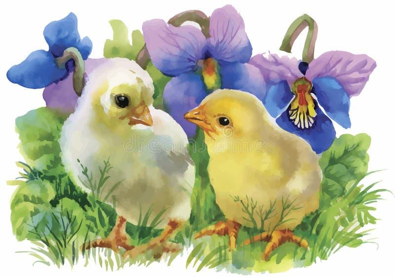 Les poulets jaunes d'aquarelle au-dessus du jardin fleurit l'illustration de vecteur de fond illustration de vecteur