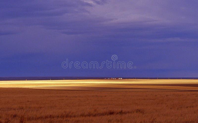 Les prairies photo stock
