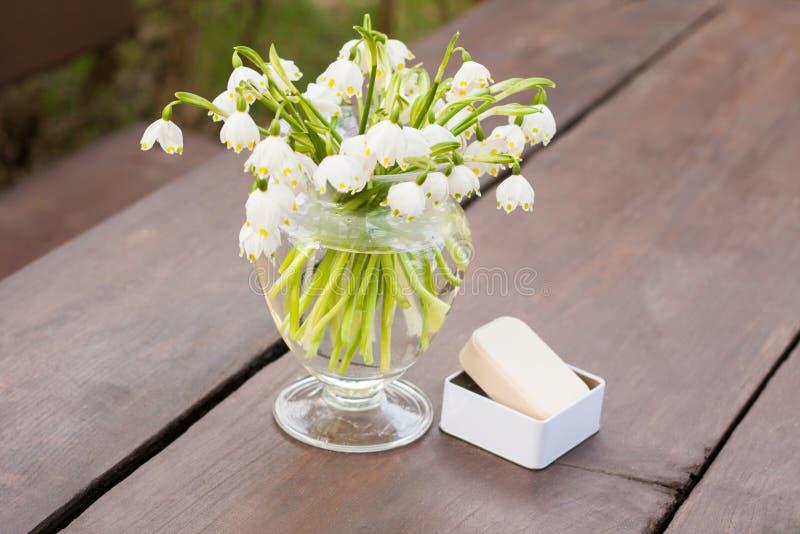 Les premières fleurs du ressort photo libre de droits