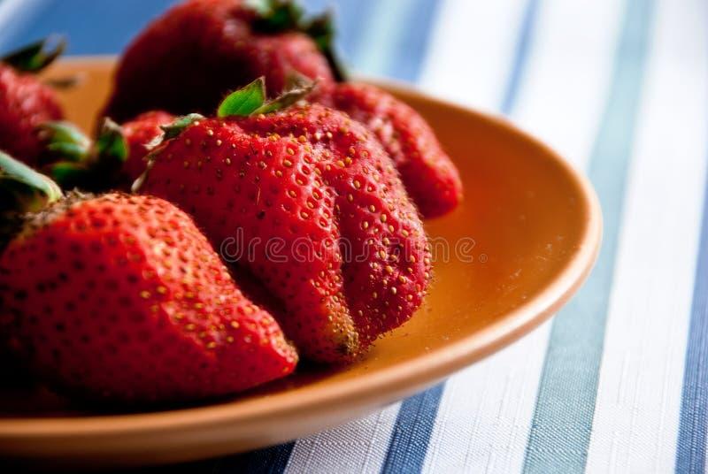 Les premières fraises de source images stock
