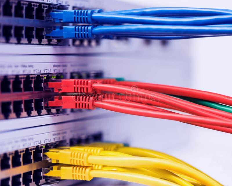 Les prises colorées de réseau informatique se sont reliées à un commutateur images stock