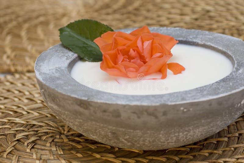 Les produits de soin de santé avec rosen le pétrole et le lait photographie stock libre de droits