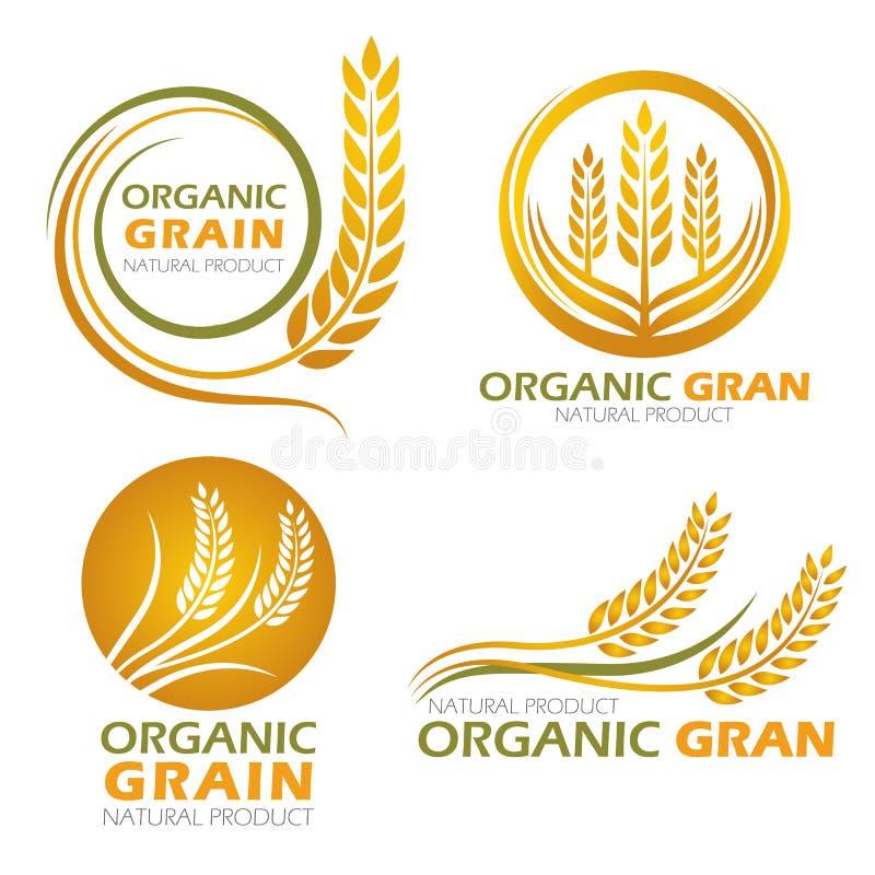 Les produits organiques de grain de riz non-décortiqué de cercle d'or et la bannière saine de nourriture signent la scénographie  illustration libre de droits