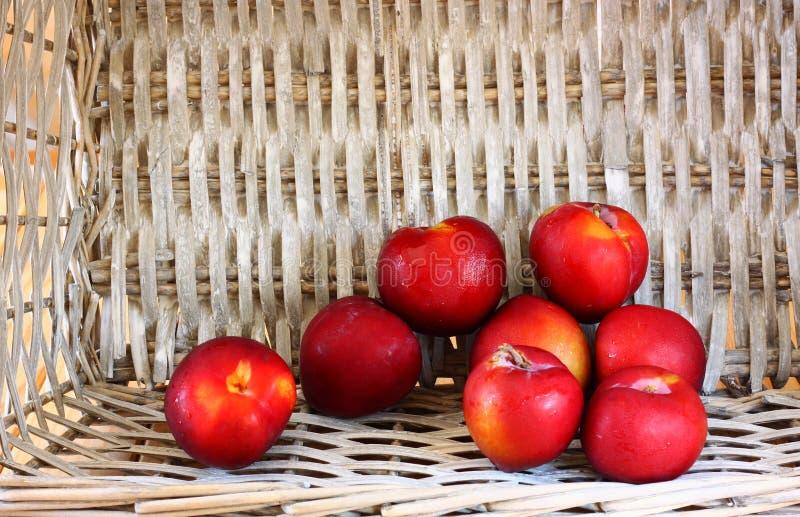 Les prunes sélectionnées fraîches mûres ont dispersé du plan rapproché de panier en osier photos libres de droits