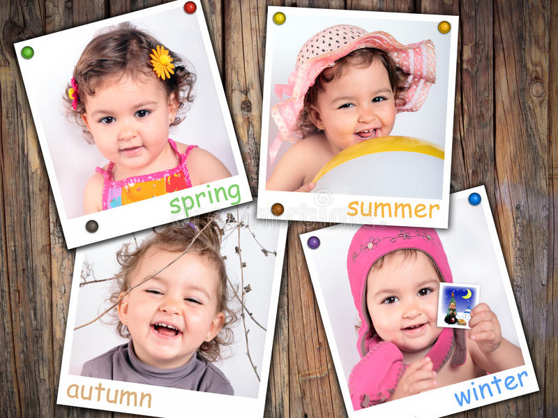 Les quatre saisons images stock