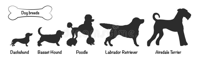 Les races de chien dirigent le noir de silhouettes illustration libre de droits