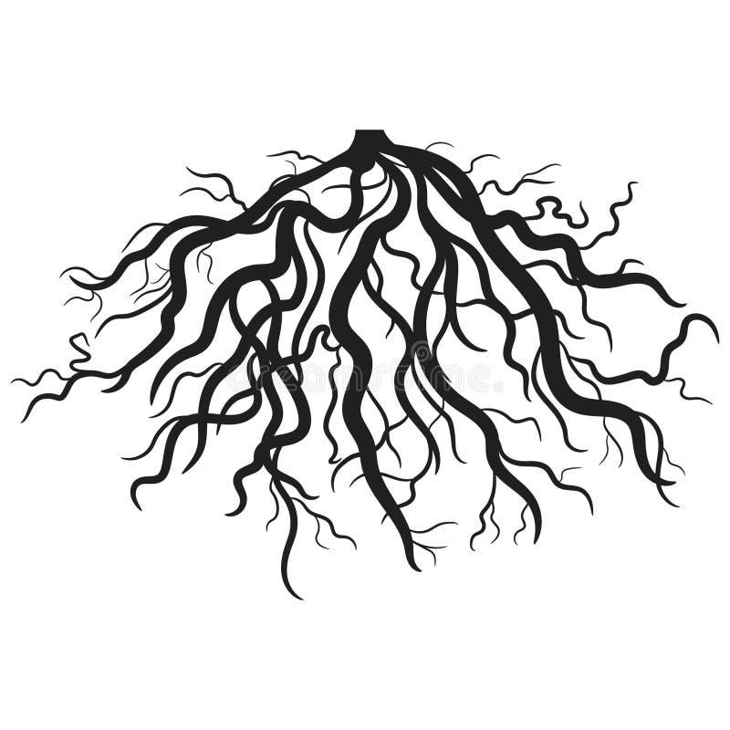 Les racines dirigent ENV tirée par la main, le vecteur, ENV, logo, icône, les crafteroks, illustration de silhouette pour différe illustration libre de droits