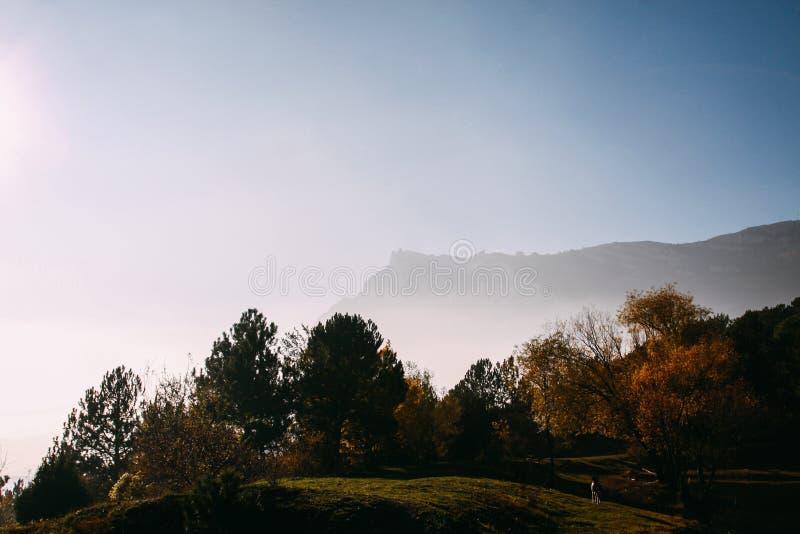 Les rayons de la soir?e exposent au soleil traverser les nuages et le brouillard au pr? des for?ts conif?res en montagnes image libre de droits
