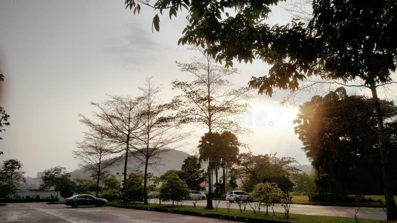 Les rayons de matin du soleil brille énergétiquement image libre de droits