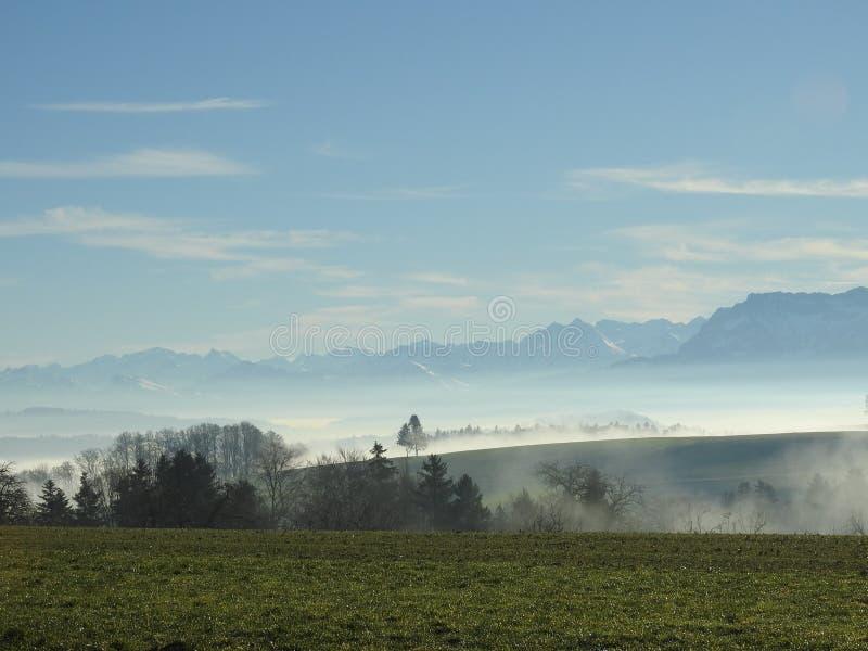 Download Les Rayons Du Soleil Traverse Les Arbres Photo stock - Image du hanté, forêt: 87705596