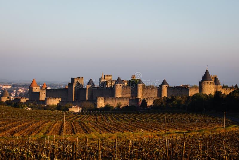 Les remparts médiévaux de vignes murent des tours de château image libre de droits