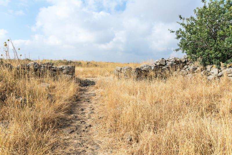 Les restes du complexe mégalithique des premières roues d'âge du bronzedes spiritueux, Al-Hiri de Rujum, Gilgal Rephaeem sur Gol image libre de droits