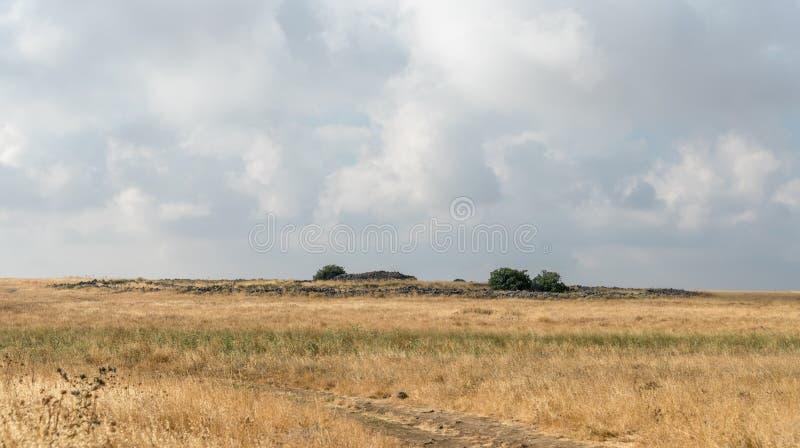 Les restes du complexe mégalithique des premières roues d'âge du bronzedes spiritueux, Al-Hiri de Rujum, Gilgal Rephaeem sur le  photo stock