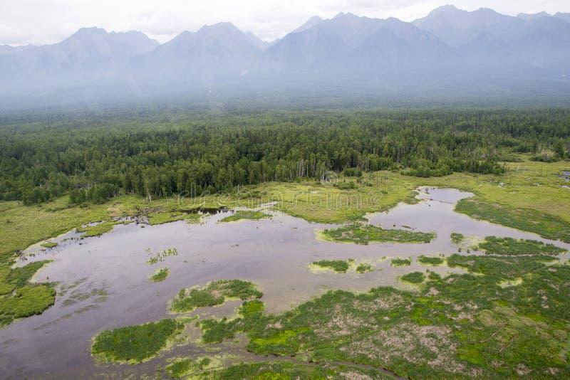 Les rivières et les lacs de la Sibérie orientale de l'altitude  photo stock
