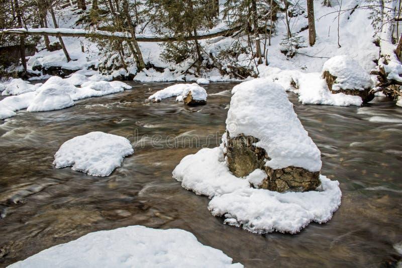 Les roches dans la rapide ont couvert en janvier la neige images libres de droits