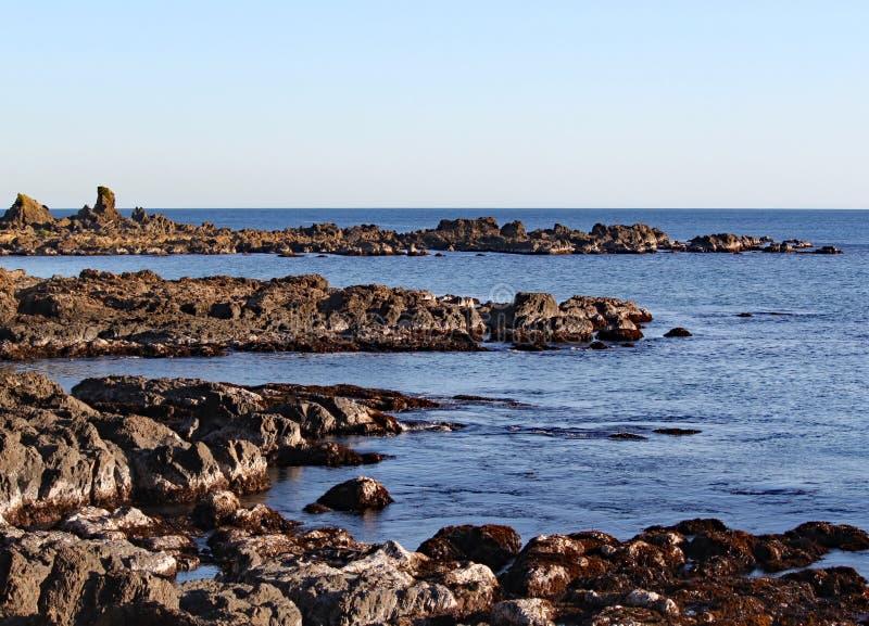 Les roches rocailleuses au point de MOA à Wellington, Nouvelle-Zélande images stock