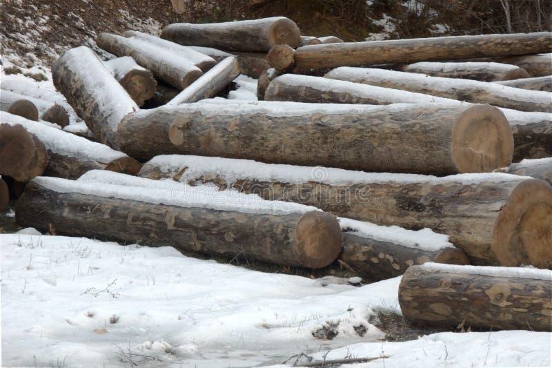 Les rondins en bois empilent à la neige images stock