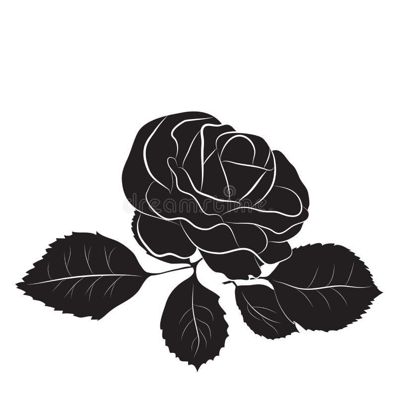 Les roses dirigent, d'isolement illustration stock