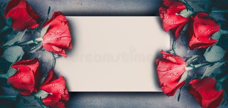 Les roses rouges raillent vers le haut de la bannière sur le fond de bureau gris, vue supérieure Disposition pour le jour de vale photo stock