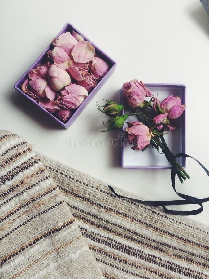 les roses se sont défraîchies photographie stock