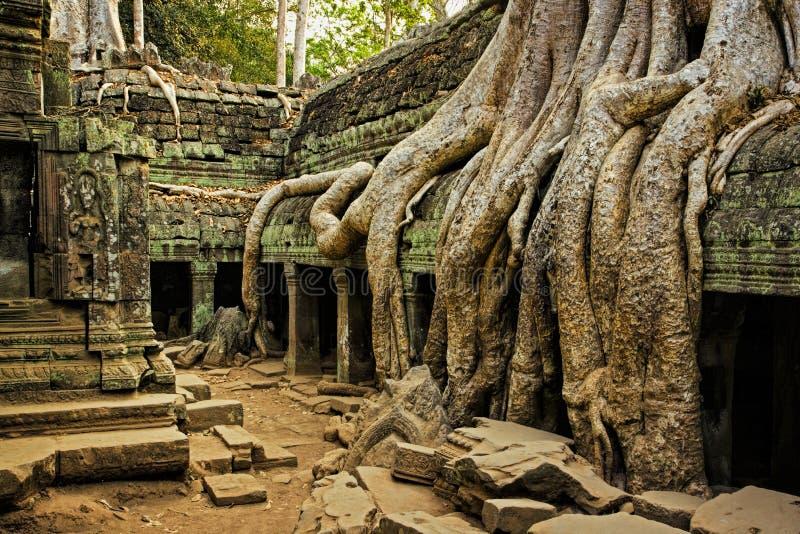 Les ruines antiques d'Angkor Vat au Cambodge photos stock