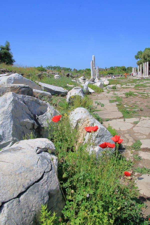 Les ruines de la ville antique du c?t? photographie stock libre de droits