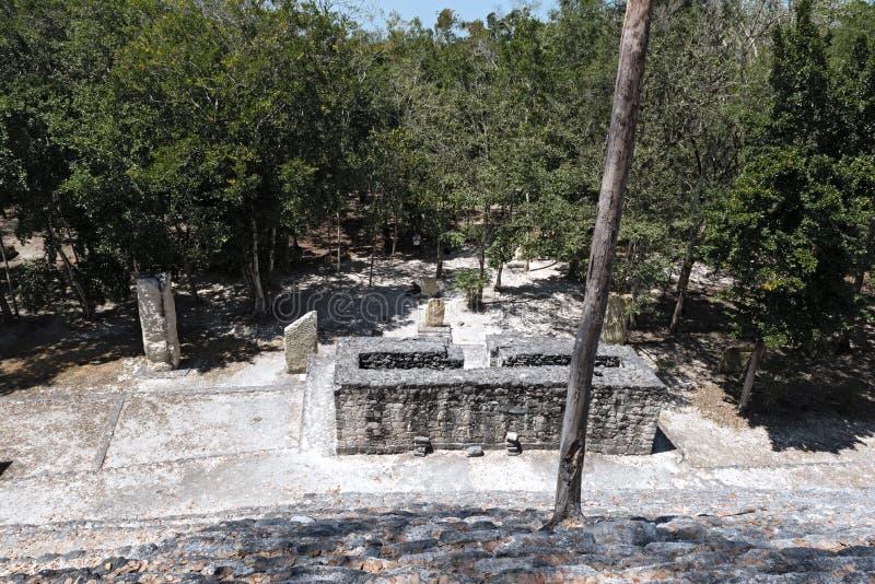 Les ruines de la ville maya antique du calakmul, Campeche, Mexique photos stock