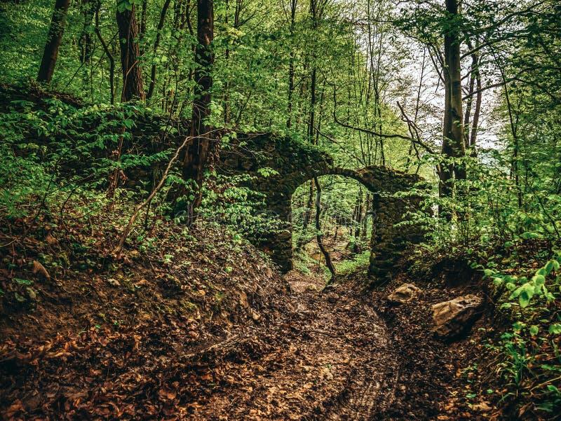 Les ruines du mur dans la forêt, le mur avec la porte d'entrée à la propriété image stock