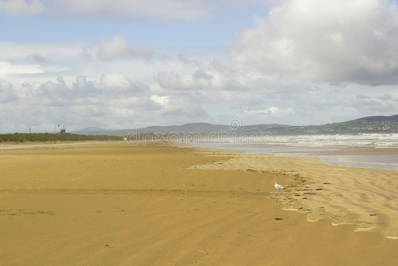 Les sables d'or de la plage abandonnée chez Benone dans le comté Londonderry sur la côte du nord de l'Irlande photos stock