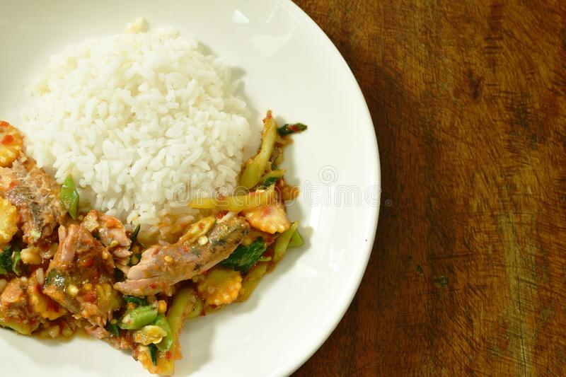 Les sardines en boîte frites par émoi épicé pêchent avec le piment et la feuille de basilic sur le riz photo stock