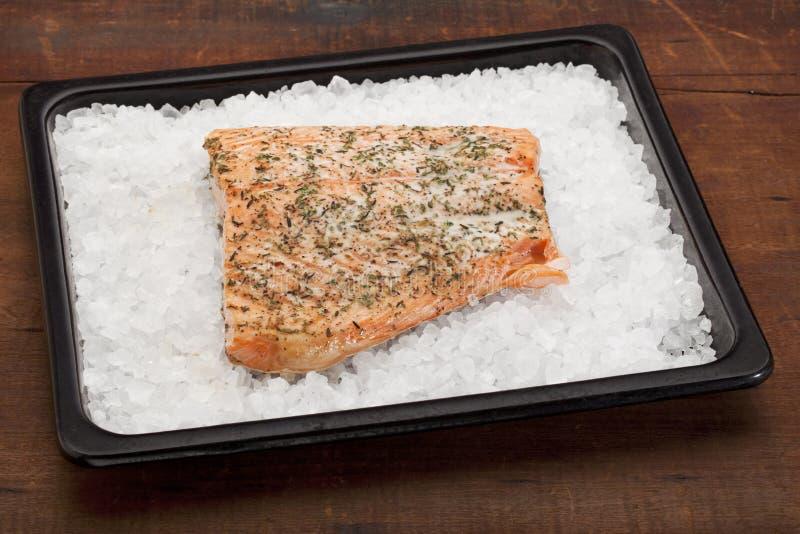 Les saumons ont fait cuire au four sur le sel gemme images stock