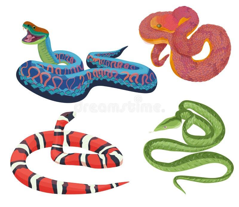 Les serpents exotiques tropicaux colorés de vecteur ont placé la collection illustration libre de droits