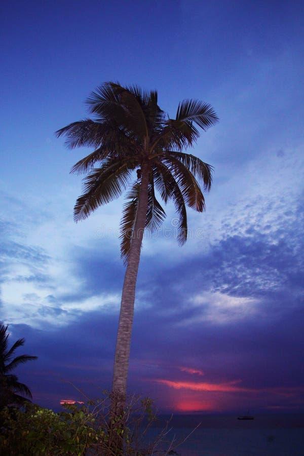 Les soleils vers le bas sur l'Internet photographie stock