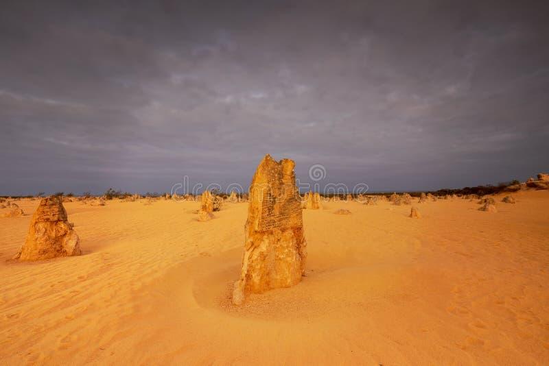 Les sommets abandonnent en parc national de Nambung dans l'Australie occidentale photographie stock libre de droits
